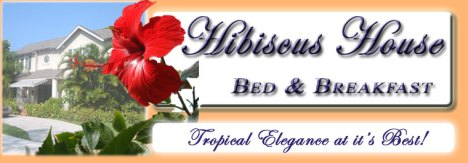 hibiscus house header
